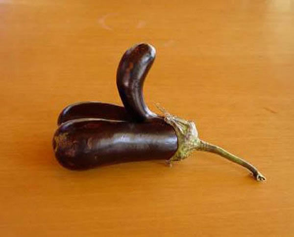 legumes-pervers3